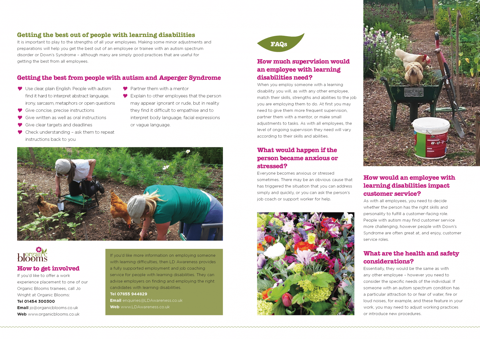 Love to work info pack_Page_4 | Organic Blooms