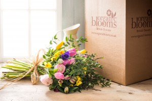 Organic Blooms hand tied flower bouquet and jug of Spring flowers delivered nationally by post as an ethical gift sustainable seasonal British cutflowers