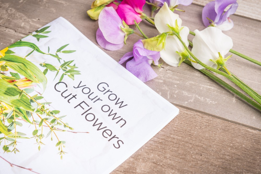 Organic Blooms Florist booklet