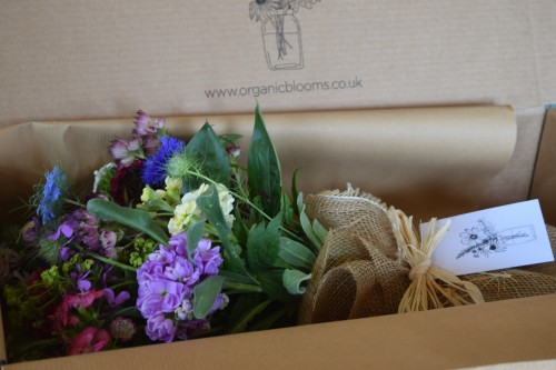 large posy of certified organic flowers from Organic Blooms