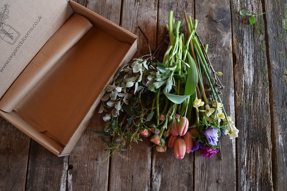 certified organic flowers by post